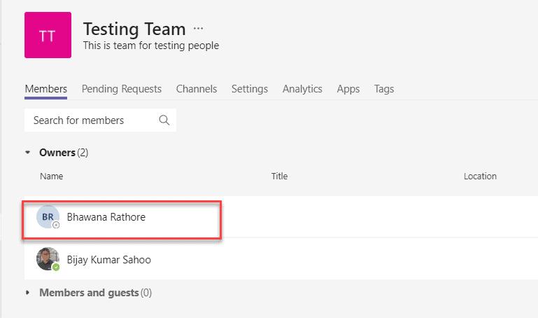powershell add team owner